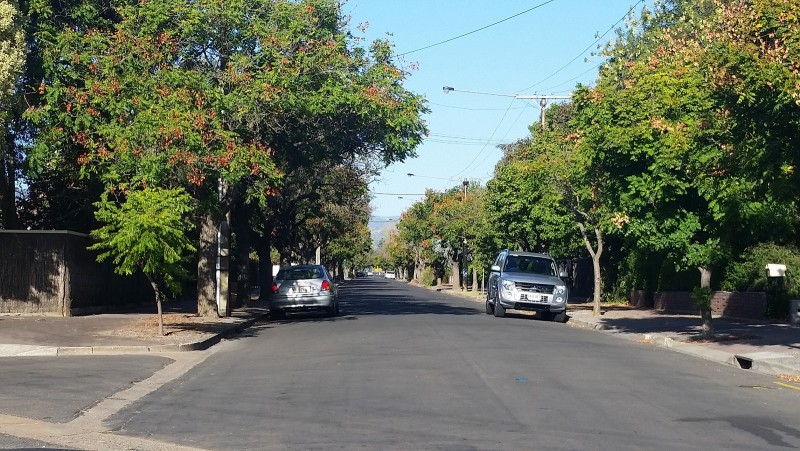Ormonde Avenue, Millswood